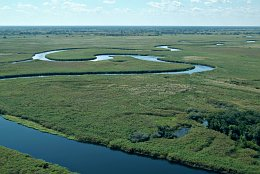 Aerial photo Okavango Panhandle