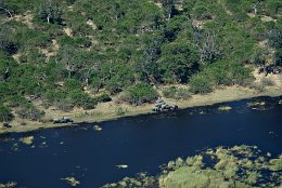 Aerial photo Elephants at Chobe River